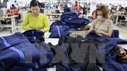 Việt Nam phải làm gì để thu được lợi ích tối đa từ EVFTA?