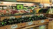 Bơ organic ngày càng 'hot' ở Mỹ