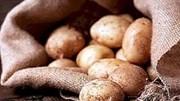Azerbaijan áp thuế xuất khẩu thực phẩm theo mùa vụ