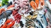 Những mặt hàng thủy, hải sản nào được nhập khẩu miễn thuế vào Trung Quốc?