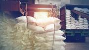 Xuất khẩu gạo của Thái Lan quý I/2021 giảm mạnh