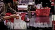 19 sản phẩm được cấp giấy chứng nhận túi nilon thân thiện môi trường