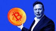 Giá bitcoin hôm nay 15/6 cao nhất kể từ tháng 5, biểu đồ dự báo giá lên 50.000 USD