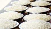 Thị trường gạo tháng 6/2020: Giá tăng ở Ấn Độ và Thái Lan trong khi giảm ở Việt Nam