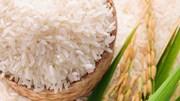 TT lúa gạo châu Á: Giá tăng tại Ấn Độ, giảm ở Việt Nam