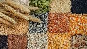 Giá nông sản và kim loại thế giới ngày 17/01/2020