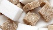 VSSA: Sẽ không có hiện tượng thiếu hụt đường trong tháng 6 và các tháng tới