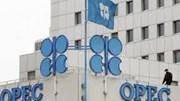 OPEC không có kế hoạch cắt giảm sản lượng để hỗ trợ giá dầu