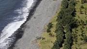 Tìm thấy mảnh vỡ thứ 2 nghi của MH370
