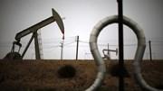Giá dầu tăng nhờ tín hiệu tăng kích thích của ECB