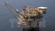 IEA: Đầu tư ngành dầu mỏ toàn cầu giảm mạnh nhất trong lịch sử