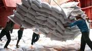 Reuters: Việt Nam trúng thầu cấp gần 1 triệu tấn gạo cho Indonesia