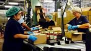 Fed: Kinh tế Mỹ đối mặt với nhiều rủi ro