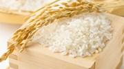 Xuất khẩu gạo trong tháng 2/2019 sang TT Ba Lan tăng đột biến cả về lượng và trị giá