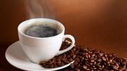 Giá cà phê trong nước ngày 24/8/2017