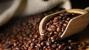 Thị trường cà phê, ca cao ngày 25/4/2017
