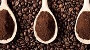 TT cà phê ngày 18/6: Giữ ở mức 34.900 – 35.700 đồng/kg