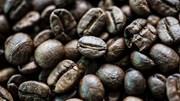 TT cà phê ngày 19/3: Chưa chấm dứt đà sụt giảm
