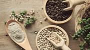 TT hạt tiêu tuần đến ngày 16/03: Tăng tới 2.000 đồng/kg chạm mức 47.000 đồng/kg