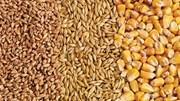 Giá nông sản và kim loại thế giới ngày 26/02/2021