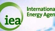 IEA: Thị trường dầu mỏ thế giới hiện nay được cung cấp đầy đủ
