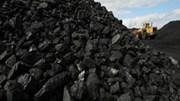 Giá than nhiệt tăng cao do nhu cầu của Trung Quốc khích lệ các nhà khai mỏ