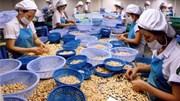 Xuất khẩu nông lâm thủy sản 7 tháng đầu năm đạt 16,93 tỷ USD