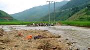 Công ty Điện lực Sơn La cũng thiệt hại trong đợt mưa lũ