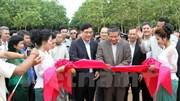 Các doanh nghiệp cao su Việt Nam hoạt động hiệu quả ở Campuchia