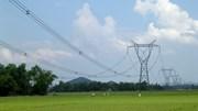 Điện mua từ Trung Quốc giảm 20%