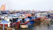 Xây dựng Trung tâm nghề cá lớn đạt 30.000 tấn/năm