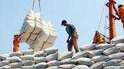 Cả nước xuất khẩu được trên 2,8 triệu tấn gạo
