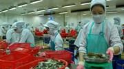 """Ngành thủy sản """"ì ạch"""" chạy theo mục tiêu xuất khẩu 640 nghìn tấn tôm năm 2015"""