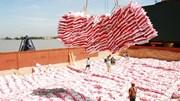 Xuất khẩu gạo, thủy sản cả nước tiếp tục giảm trong 7 tháng đầu năm 2015