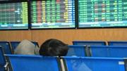 VN-Index giảm 5,5 điểm, cổ phiếu thuỷ sản đi ngược thị trường
