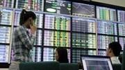 97 nhà đầu tư nước ngoài được cấp mã số trong tháng 9