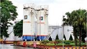 Petrolimex: Bảo đảm nguồn cung xăng E5