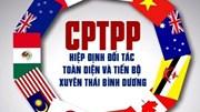 Hôm nay CPTPP chính thức có hiệu lực với Việt Nam