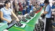 Cơ hội lớn cho ngành da giày trong năm Mậu Tuất
