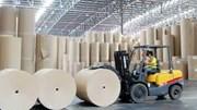 Nhập khẩu giấy từ thị trường Pháp tăng mạnh vượt trội