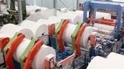 Xuất khẩu giấy và sản phẩm kim ngạch tiếp tục tăng