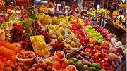 Hà Nội: Thí điểm quản lý các cửa hàng kinh doanh trái cây tại các quận nội thành