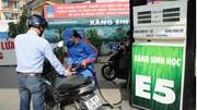 TP. Hồ Chí Minh: Tiêu thụ xăng E5 tăng nhanh