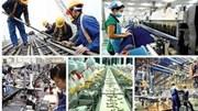 Sản xuất công nghiệp chế biến, chế tạo tăng trên 10% trong 7 tháng đầu năm 2019