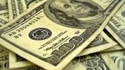TT ngoại tệ ngày 24/11: tỷ giá trung tâm và đồng USD quốc tế cùng giảm