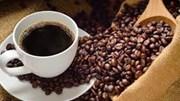 Thị trường cà phê có khả năng biến chuyển tốt