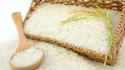 Xuất khẩu sang thị trường Bỉ, mặt hàng gạo tăng mạnh