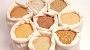Xuất khẩu thức ăn chăn nuôi và nguyên liệu giảm sau 2 tháng tăng liên tiếp