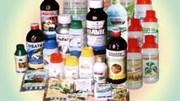 50% thuốc bảo vệ thực vật nhập khẩu Trung Quốc