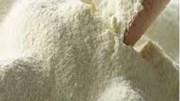 Giá sữa bột gầy New Zealand lao dốc 25%